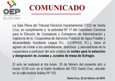 Comunicado_Sorteo_Jurados_COSPHUL_2019