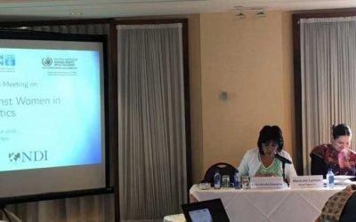 El TSE de Bolivia participa en la reunión del grupo de expertas sobre la violencia política contra la mujer