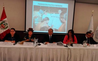 Choque: Debemos fortalecer la normativa referida a los derechos colectivos de las naciones y pueblos indígenas