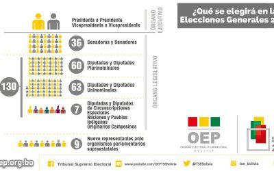 El 18 de octubre elegiremos a 177 autoridades de los órganos Ejecutivo y Legislativo